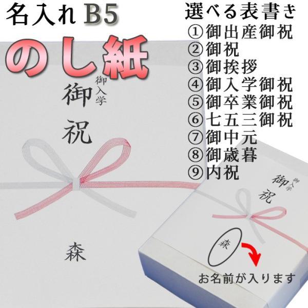 のし紙 蝶結び 熨斗紙 印刷 名前入り 名入れ 御祝い 御挨拶 20枚 B5サイズ 送料無料