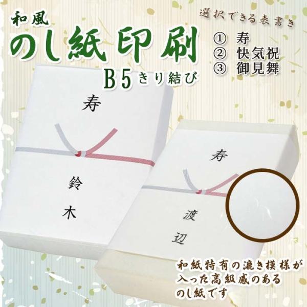 和紙 のし紙 きり結び 熨斗紙 印刷 名前入り 名入れ 寿 御見舞 20枚 B5サイズ 送料無料