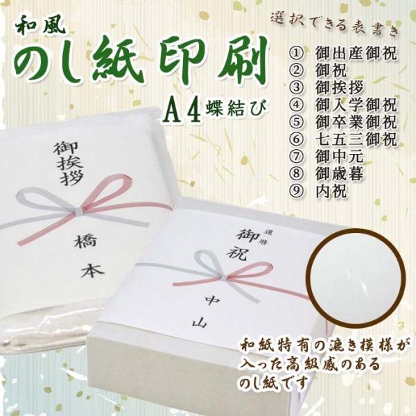 和紙 のし紙 蝶結び 熨斗紙 印刷 名前入り 名入れ 御祝い 御挨拶 20枚 A4サイズ 送料無料