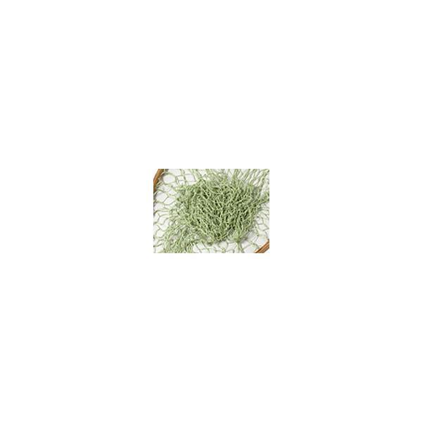 バレーヒル ハンドメイドランディングネット サイズ:M