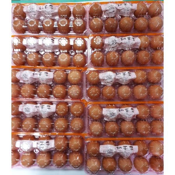 お中元・お歳暮(濃厚)(送料無料)黄身が自慢の初玉子(たまご・卵)(10コ入り×10パック=100コ)
