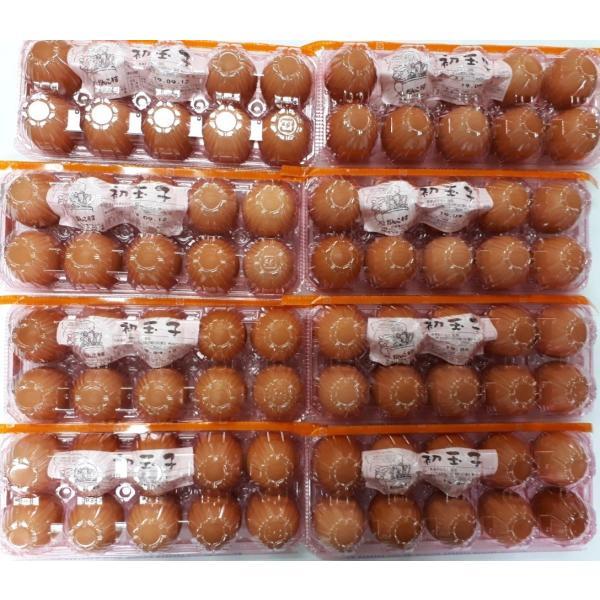 お中元・お歳暮(濃厚)(送料無料)黄身が自慢の初玉子(たまご・卵)(10コ入り×8パック=80コ)