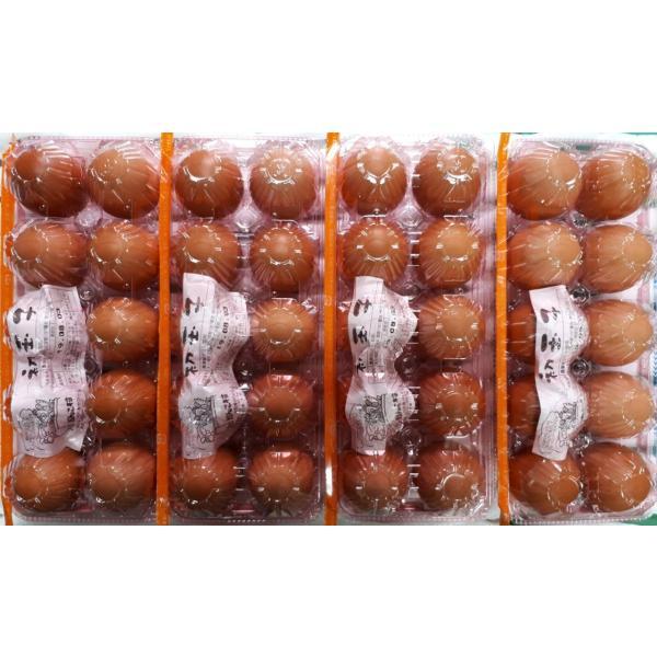 お中元・お歳暮(濃厚)(送料無料)黄身が自慢の初玉子(玉子・たまご・卵・鶏卵)(10コ入り×4パック=40コ)