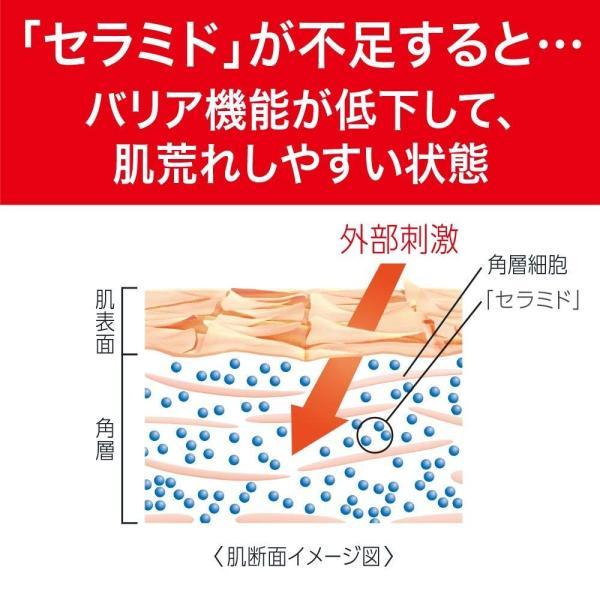 キュレル 頭皮保湿ローション 120ml|kamoshika|04