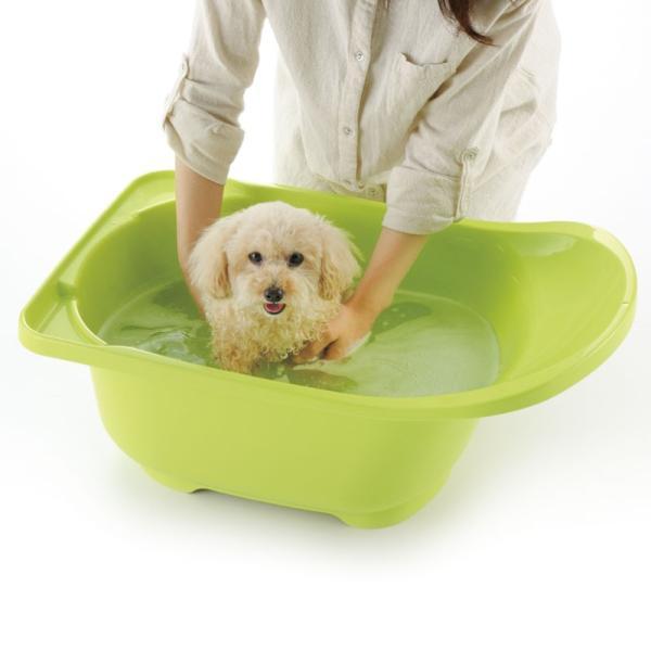ペット用品 犬 お手入れ トリミング お風呂 タブ リッチェル Richell ペットバス|kamoshikanet|02