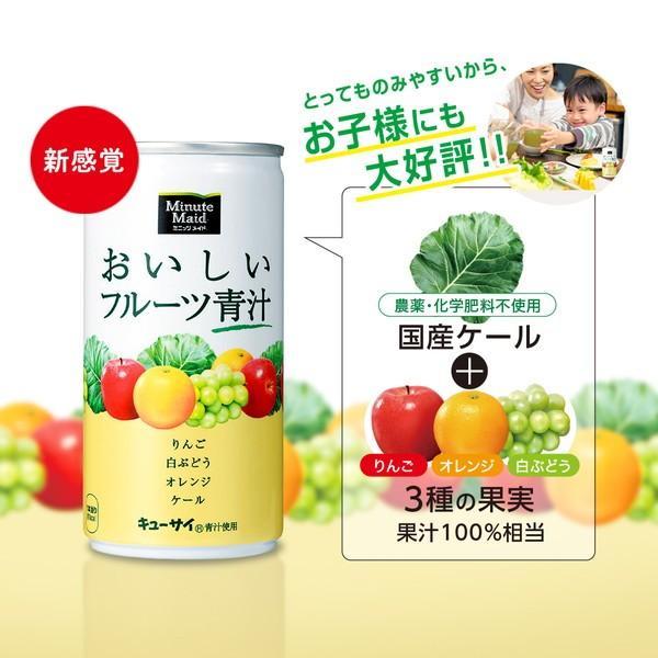 ミニッツメイド おいしいフルーツ青汁 190g缶 1ケース 30本入 無農薬 国産ケール使用|kanaemina