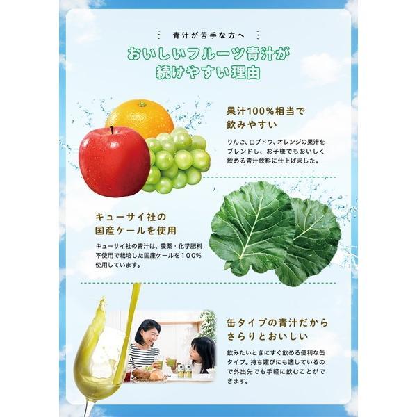 ミニッツメイド おいしいフルーツ青汁 190g缶 1ケース 30本入 無農薬 国産ケール使用|kanaemina|02