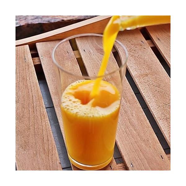 三ヶ日みかんジュース ストレート 果汁100% フルーツジュース 果物ドリンク 720ml×12本入|kanaemina|02