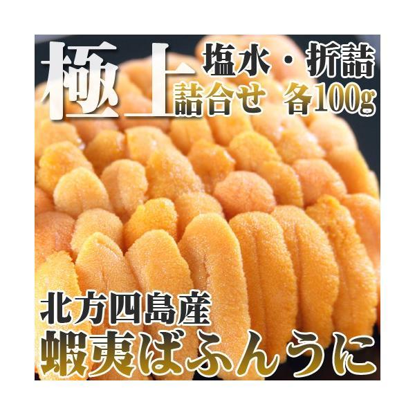 ウニ うに 100g 特上えぞばふんうに 生 塩水詰 折詰 セット 北方四島産 北海道特産
