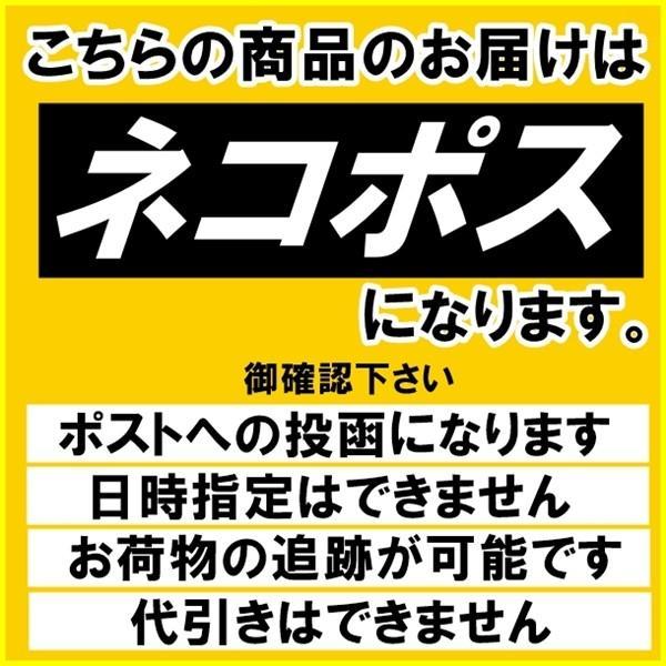 ブロークン カシューナッツ500g タンドリーチキン風味 送料無料 kanayamatomato 03