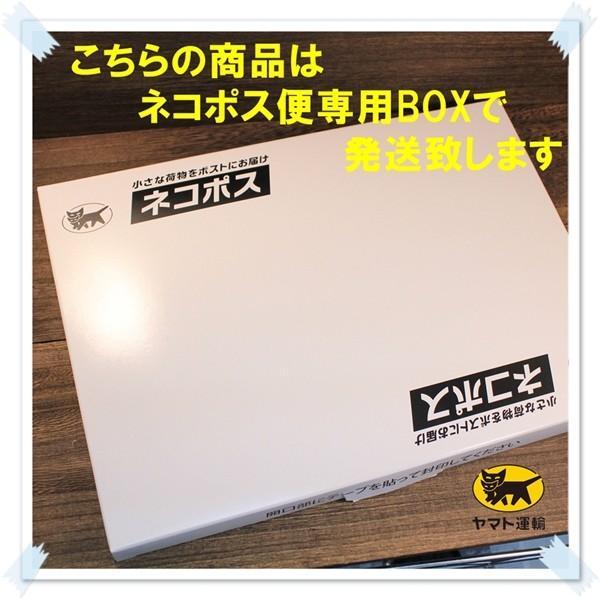 ブロークン カシューナッツ500g タンドリーチキン風味 送料無料 kanayamatomato 05