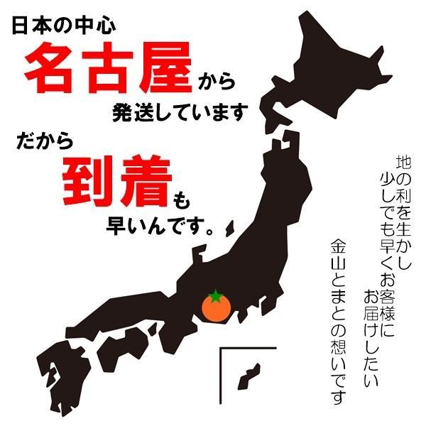 ブロークン カシューナッツ500g タンドリーチキン風味 送料無料 kanayamatomato 06