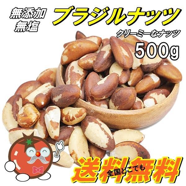 素焼きブラジルナッツ 人気サイズ500g 無添加・無塩 【メール便送料無料】