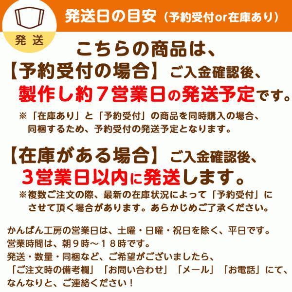 接触冷感シトラスリボンマスク大人用(愛媛県/日本製)洗える1枚入 kanbankobo 03