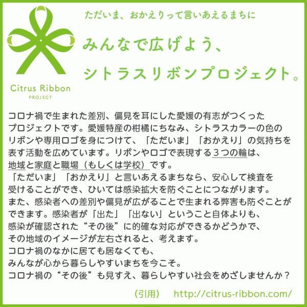 接触冷感シトラスリボンマスク大人用(愛媛県/日本製)洗える1枚入 kanbankobo 04