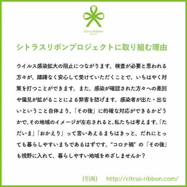 接触冷感シトラスリボンマスク大人用(愛媛県/日本製)洗える1枚入 kanbankobo 05