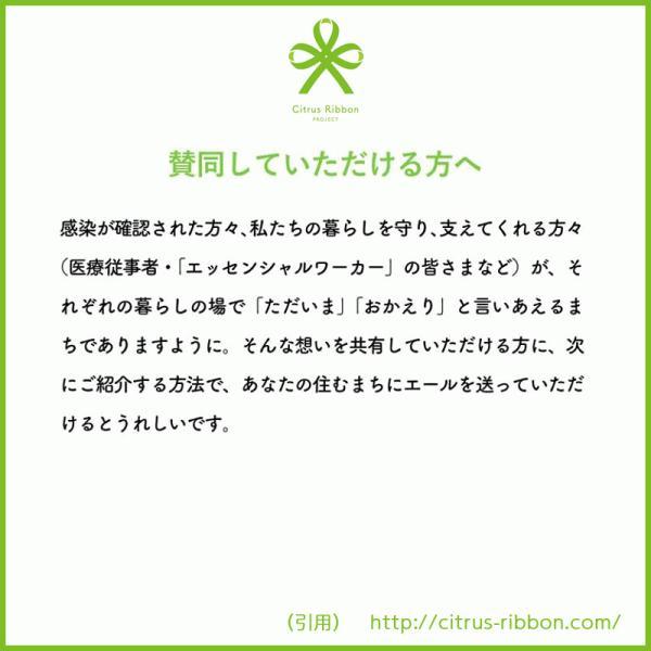 接触冷感シトラスリボンマスク大人用(愛媛県/日本製)洗える1枚入 kanbankobo 06