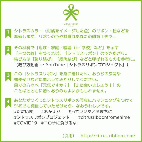 接触冷感シトラスリボンマスク大人用(愛媛県/日本製)洗える1枚入 kanbankobo 07