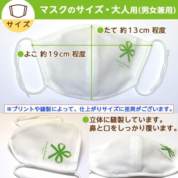 接触冷感シトラスリボンマスク大人用(愛媛県/日本製)洗える1枚入 kanbankobo 09