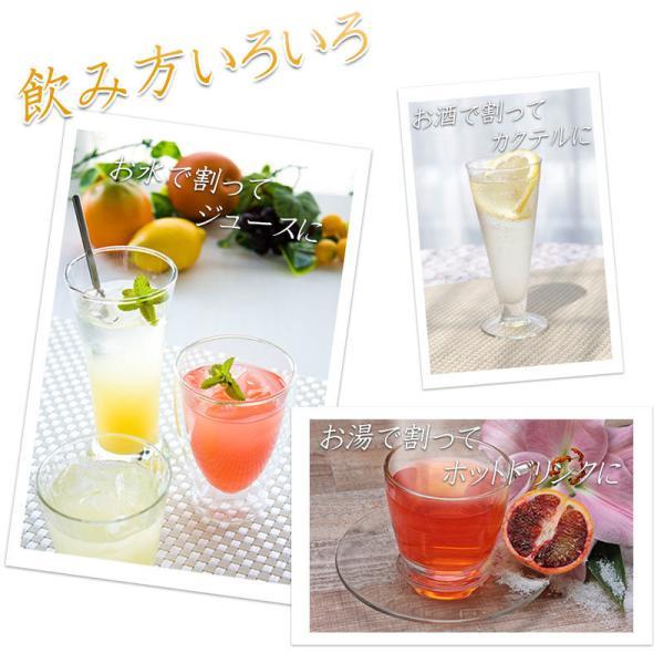 父の日 プレゼント 飲むお酢 飲む酢 ギフト ゆず ブラッドオレンジ 青みかん 果実酢 フルーツ酢|kandasyouten|03