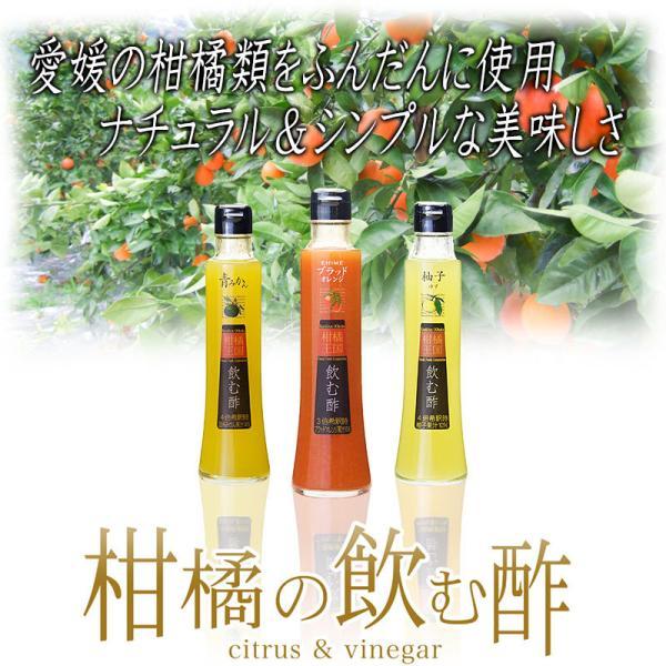 父の日 プレゼント 飲むお酢 飲む酢 ギフト ゆず ブラッドオレンジ 青みかん 果実酢 フルーツ酢|kandasyouten|04