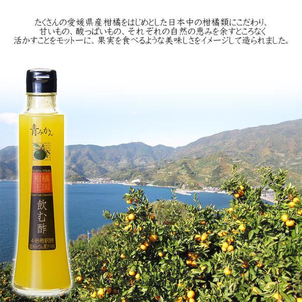 父の日 プレゼント 飲むお酢 飲む酢 ギフト ゆず ブラッドオレンジ 青みかん 果実酢 フルーツ酢|kandasyouten|05