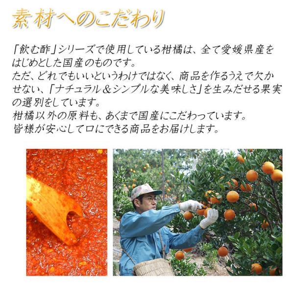父の日 プレゼント 飲むお酢 飲む酢 ギフト ゆず ブラッドオレンジ 青みかん 果実酢 フルーツ酢|kandasyouten|06