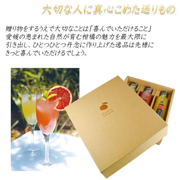 父の日 プレゼント 飲むお酢 飲む酢 ギフト ゆず ブラッドオレンジ 青みかん 果実酢 フルーツ酢|kandasyouten|10