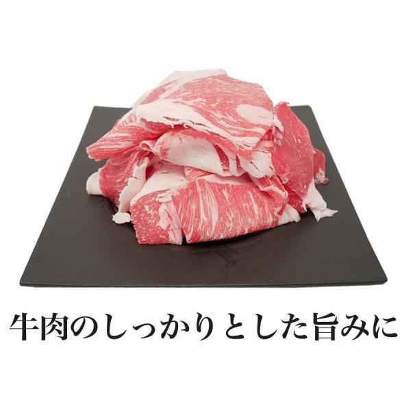 【訳あり】【国産牛】九州交雑牛切り落とし250g|kande-pro|04