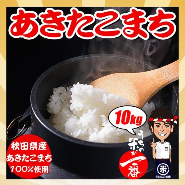 新米 お米 29年度(2017) 秋田県産 あきたこまち 10kg (5kgx2袋)|kanekokome