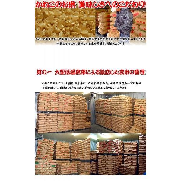 新米 お米 29年度(2017) 秋田県産 あきたこまち 10kg (5kgx2袋)|kanekokome|02