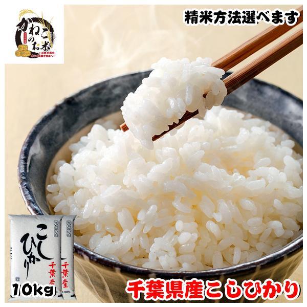 米 お米 10kg (5kgx2袋) 千葉県産 コシヒカリ ※五分搗き 七分搗き 白米 選択可 熨斗紙 名入れ ギフト対応|kanekokome