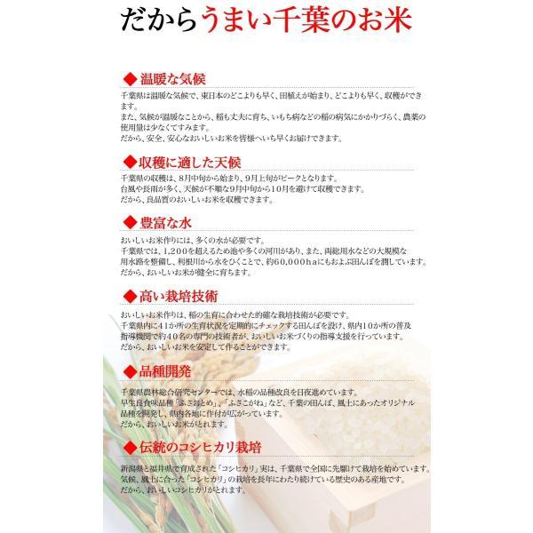 新米 お米 29年度(2017) 千葉県産 こしひかり 10kg (5kgx2袋) ※五分搗き 七分搗き 白米 選択可|kanekokome|02