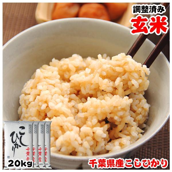 米 お米 20kg (5kgx4袋) 千葉県産 こしひかり 玄米 選別調整済み kanekokome