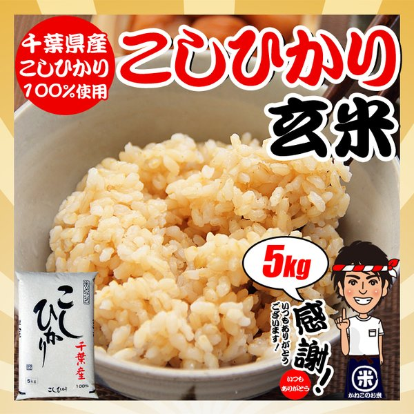 玄米お米5kg令和2年産千葉県産コシヒカリ 調整済み