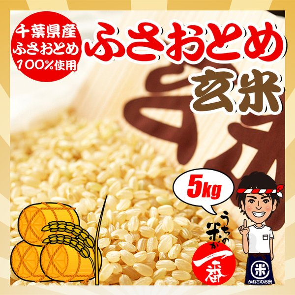 玄米お米5kg令和2年産千葉県産ふさおとめ 調整済み
