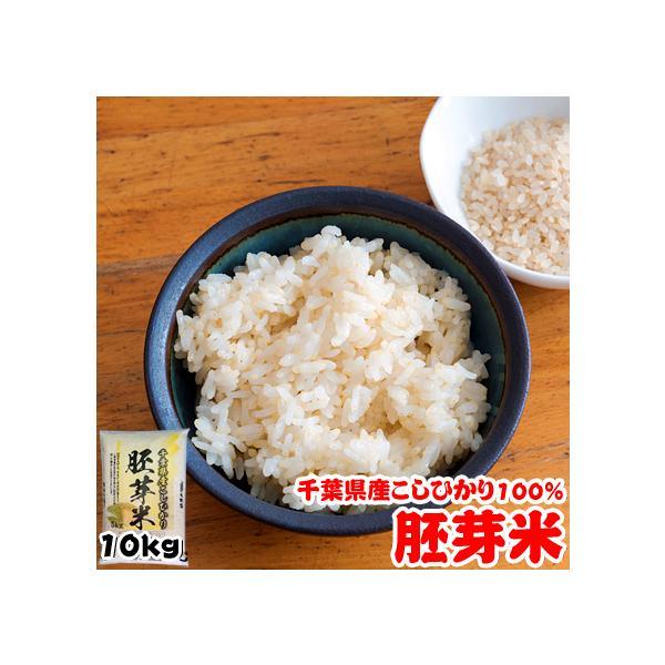 米 お米 10kg (5kgx2袋) 千葉県産 胚芽米 コシヒカリ 熨斗紙 名入れ ギフト対応|kanekokome
