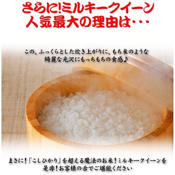 米 お米 10kg (5kgx2袋) 千葉県産 ミルキークイーン 白米or玄米選択可 熨斗紙 名入れ ギフト対応|kanekokome|05