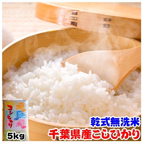 米 お米 5kg 千葉県産 無洗米 コシヒカリ 熨斗紙 名入れ ギフト対応|kanekokome