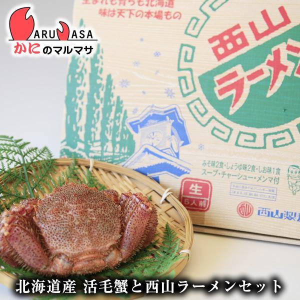 北海道産 活毛がに&札幌ラーメンセット(活毛ガニ350g×2尾・西山ラーメン5食) お取り寄せ ギフト