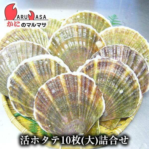 活ホタテ貝 大 10枚セット [あすつく関西] 北海道産 殻付きほたて お取り寄せ ギフト お土産 通販