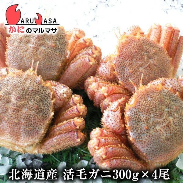 毛がに 300g 4尾セット [あすつく関西] 北海道産 極上毛ガニ お取り寄せ ギフト お土産 通販