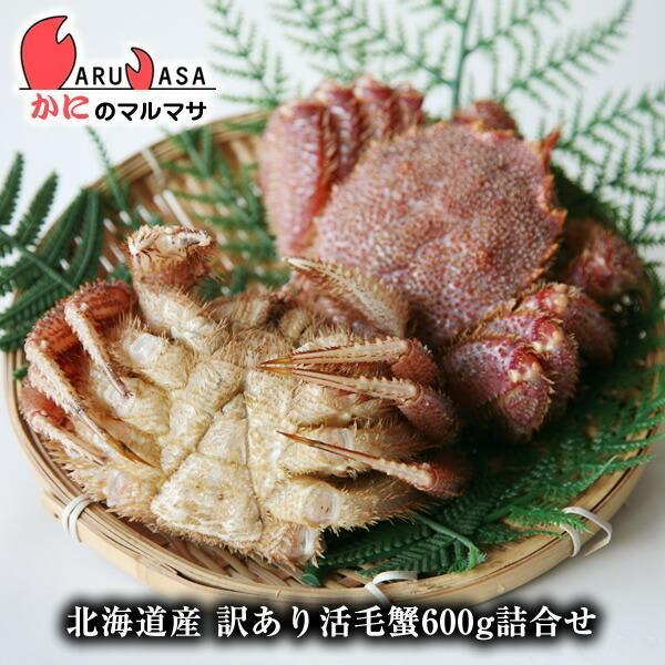 訳あり 活毛がに 600gセット [あすつく関西] 北海道産 毛ガニ お取り寄せ 足折れ 規格外 通販