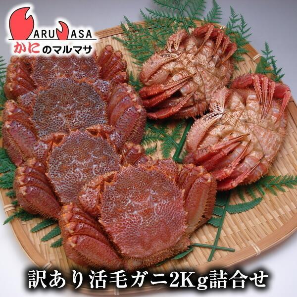 訳あり 活毛がに 2kgセット [あすつく関西] 北海道産 毛ガニ お取り寄せ 足折れ 規格外 通販