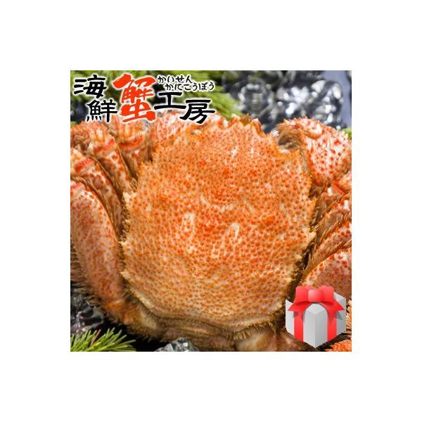 ボイル 毛ガニ 姿 800g前後 1尾 毛蟹 かにみそ 海鮮 贈り物 蟹 お取り寄せ ギフト グルメ 送料無料 オホーツク カニ