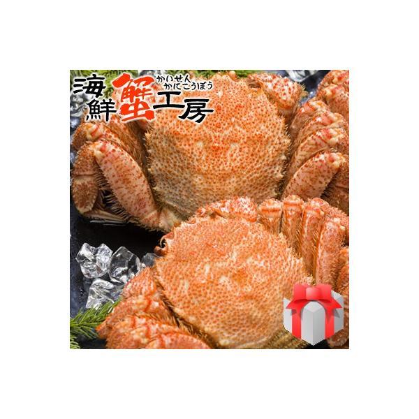 ボイル 毛ガニ 姿 800g前後 2尾 毛蟹 かにみそ 海鮮 贈り物 蟹 お取り寄せ ギフト グルメ 送料無料 オホーツク カニ