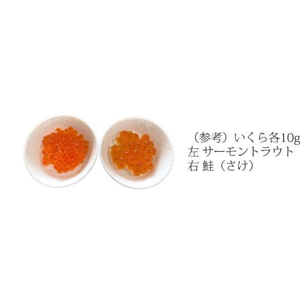 いくら醤油漬 ( サーモントラウト 卵 ) 500g(250g×2パック入り) / 北欧サーモン いくら イクラ 小粒|kanipara|05