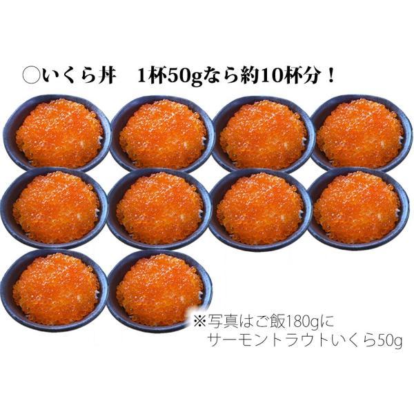 いくら醤油漬 ( サーモントラウト 卵 ) 500g(250g×2パック入り) / 北欧サーモン いくら イクラ 小粒|kanipara|08