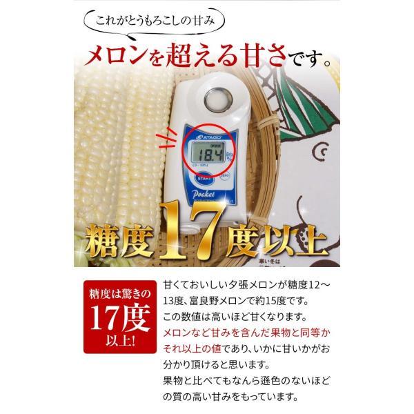 (送料無料)白いとうもろこし 白くまコーン 10本入り 生食 北海道産スイートコーン 朝もぎ生とうきびお取り寄せ|kanitaro|03