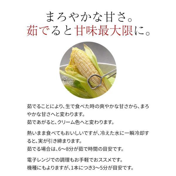 (送料無料)白いとうもろこし 白くまコーン 10本入り 生食 北海道産スイートコーン 朝もぎ生とうきびお取り寄せ|kanitaro|10